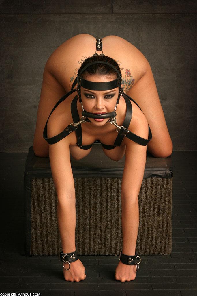 stockings leather hardcore boy girl girl girl masturbation and more